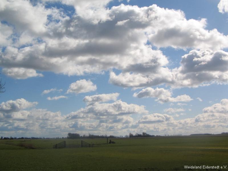Landschaftseindrücke