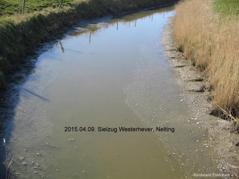 Sielzüge mit niedrigem Wasserstand