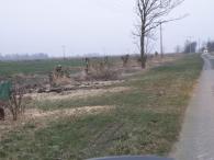 Graben 3 nach Räumung und Baumfällung